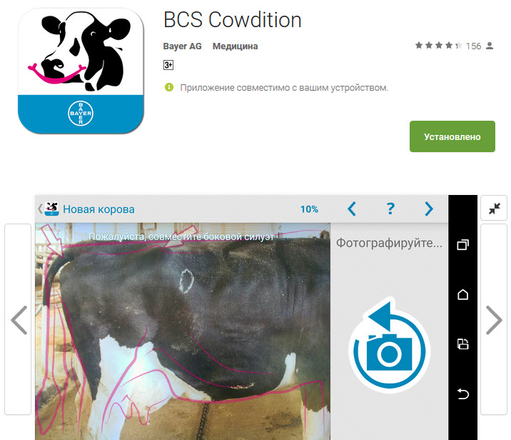 BCS Cowdition_ Bayer AG